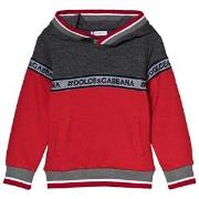 Dolce & Gabbana Red and Grey Logo Hoody 2 years